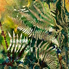 """Forest Fantasy"" (mixed media collage) by Sharon Robinson"