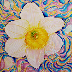 """Glowing Daffodil Corona"" (acrylic on canvas) by Kong Ho"