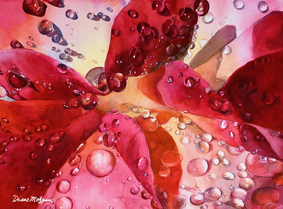 """Raindrops on Roses"" (watercolor) by Diane Morgan"
