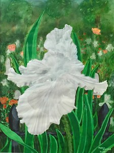 """Fleur D'iris Blanche"" (watercolor and ink wash) by Mateo Balara"