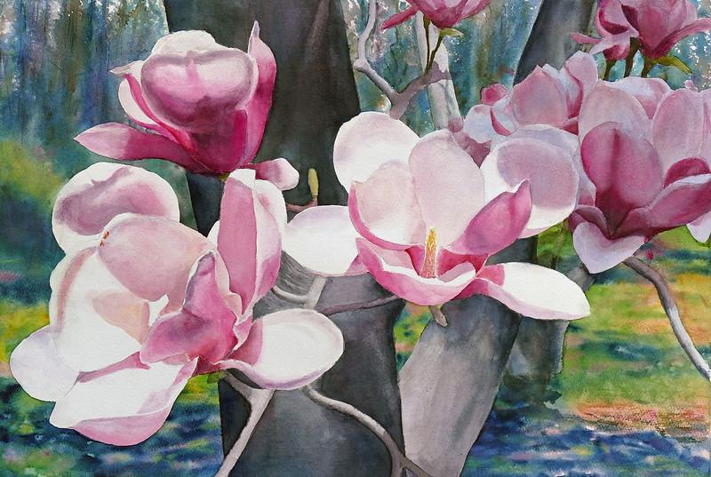 """""""Magnolias"""" (watercolor) by Elizabeth Burin"""