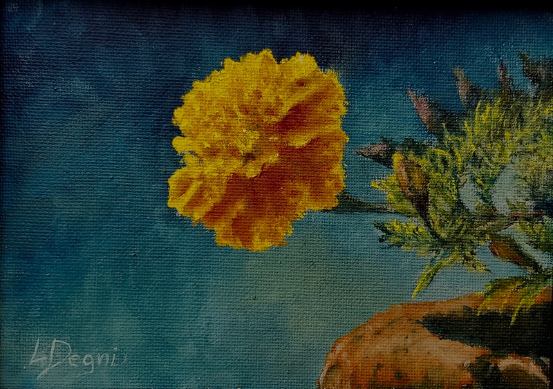 """""""The Yellow Marigold"""" (oil on canvas board) by Louis Degni"""