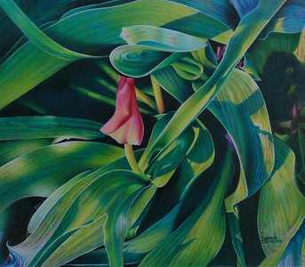 """""""Spring Green"""" (colored pencil) by Pamela Clements"""