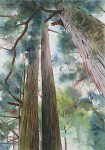 """""""Tall Trees"""" (fluid acrylic and watercolor on paper) by Elizabeth Burin"""