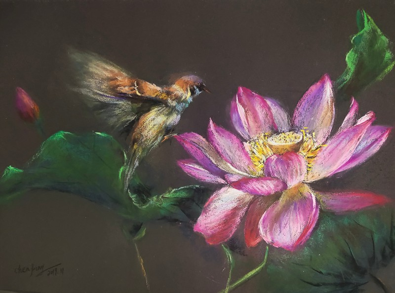 """""""Playing with lotus"""" (soft pastel on paper) by Ping Chen"""