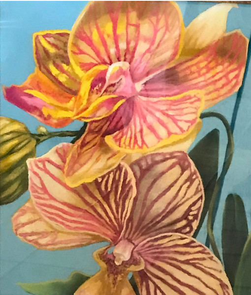 """Orchid Series II"" (pastel) by Marilyn Goldberg"