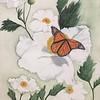 """Matilija Poppy"" (watercolor) by Kathy Joyce"