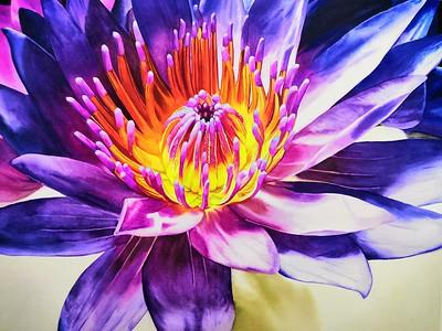 """""""Lotus"""" (watercolor) by Xiaoxia Chen"""
