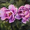 """""""Drunk in spring breeze"""" (watercolor) by Xuelin Li"""