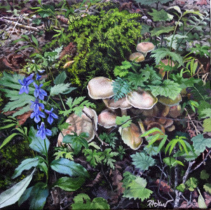"""""""Small Wild"""" (oil on canvas) by Pamela Askew"""