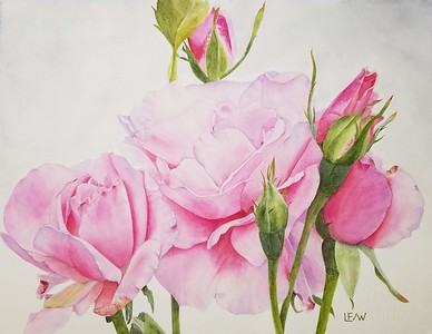 """""""Katie's Roses"""" (watercolor) by Lisa Freeman-Wood"""