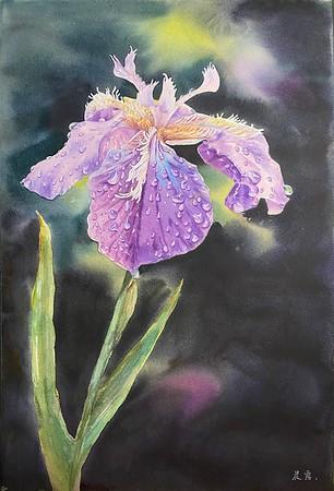 """""""Iris after rain"""" (watercolor) by Xinglu Cao"""