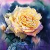 """Yellow roses after rain"" (watercolor) by Na Hu"