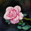 """Rose flowers"" (watercolor) by Liping Feng"