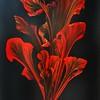 """Fire Flower"" (digital) by Anna Toropova"