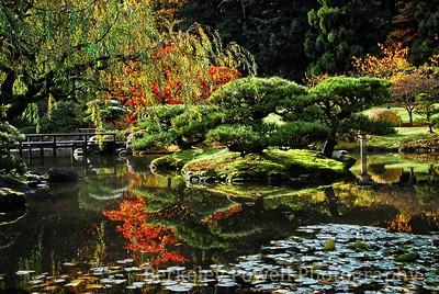 Garden Pond & Bridge