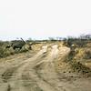 Oryx, Kalahari Desert