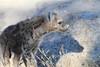 Spotted-Hyena_Botswana (8)