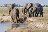 Elephant-and-baby-enjoying-mudbath-beside-Chobe-River