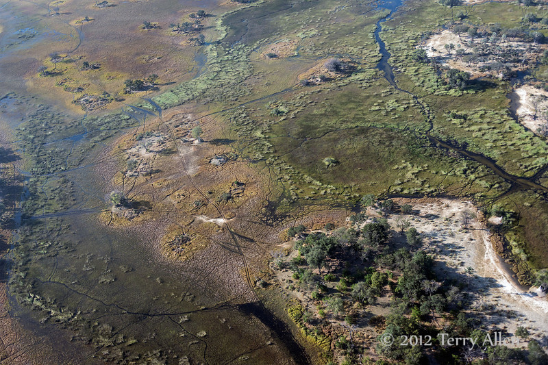 Okavango-Delta-from-air-5