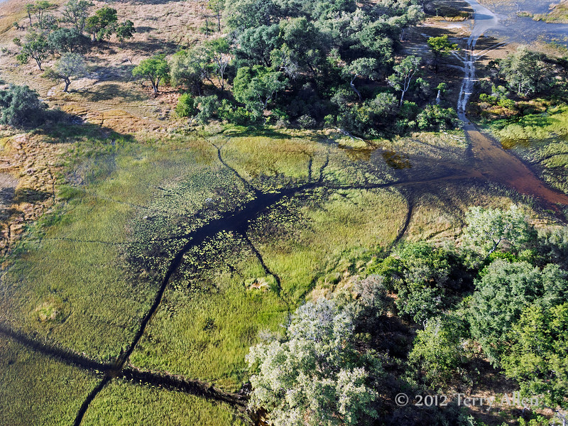 Okavango-Delta-from-air-3