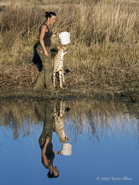 Woman-&-pet-cheetah-2