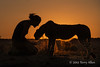 Woman-&-pet-cheetah-silhouetted-at-sunset-3