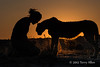 Woman-&-pet-cheetah-silhouetted-at-sunset-4