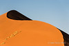 Sand-dune-with-patch-of-dune-grass-2