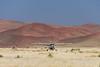 Desert-Air,-touchdown-near-Sossusvlei