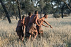 Bushmen-demonstrating-hunting-technique-2,-Intu-Africa
