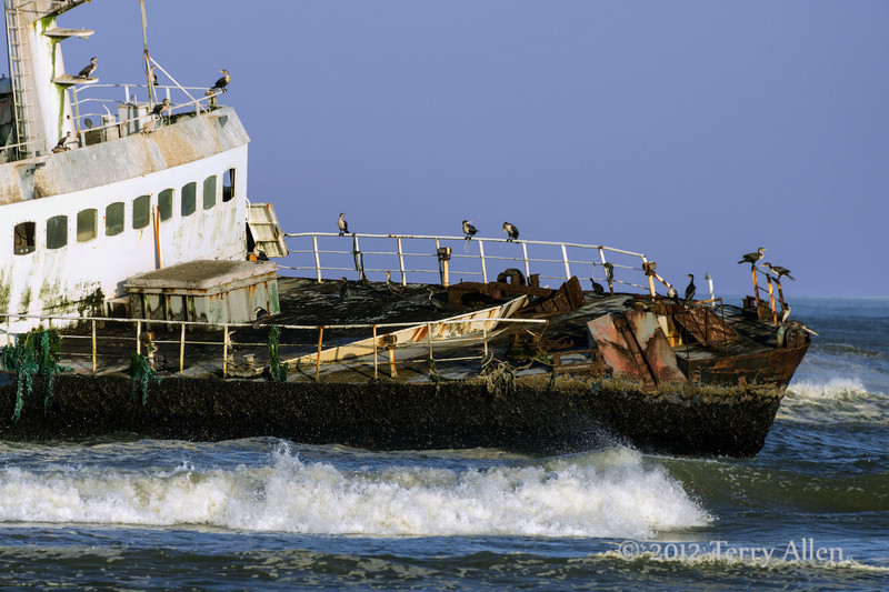 Wrecked-fishing-boat (MFV Zeila)-with-cormorants ,-Skeleton-Coast,-Namibia