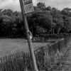 Forelorn bus stop, Boughton, Northampton