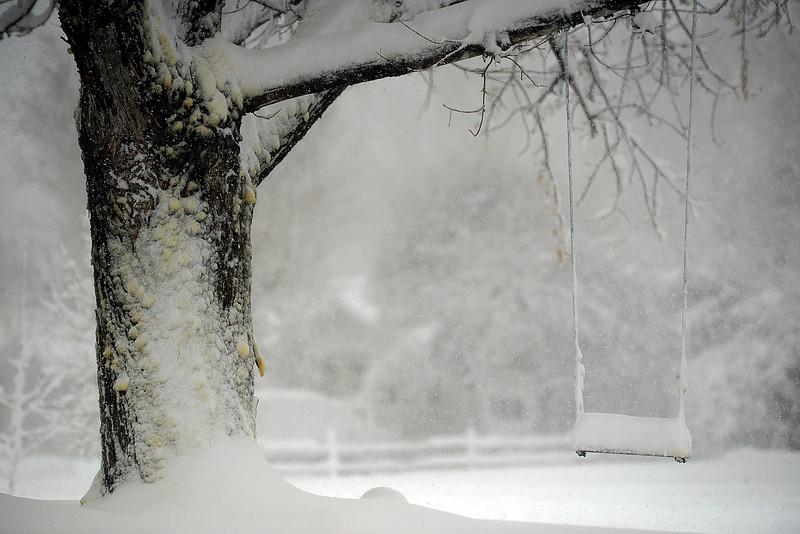 Spring blizzard