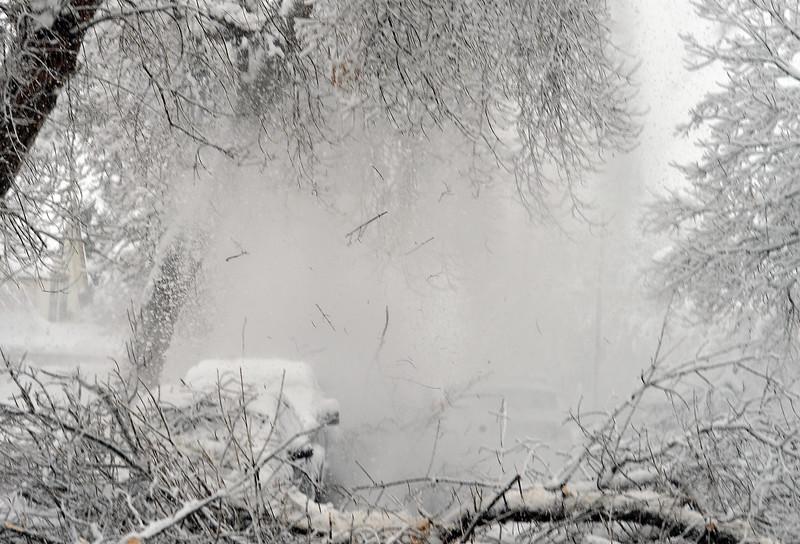 blizzard123