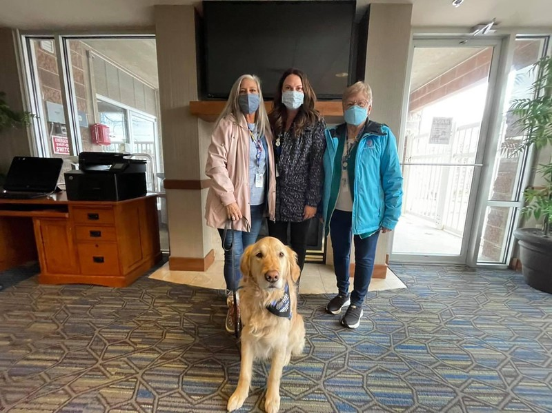 Katie Comfort Dog and Ministry Team