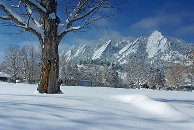 Chautauqua Winter