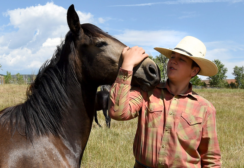 4H Kids Train Wild Mustangs