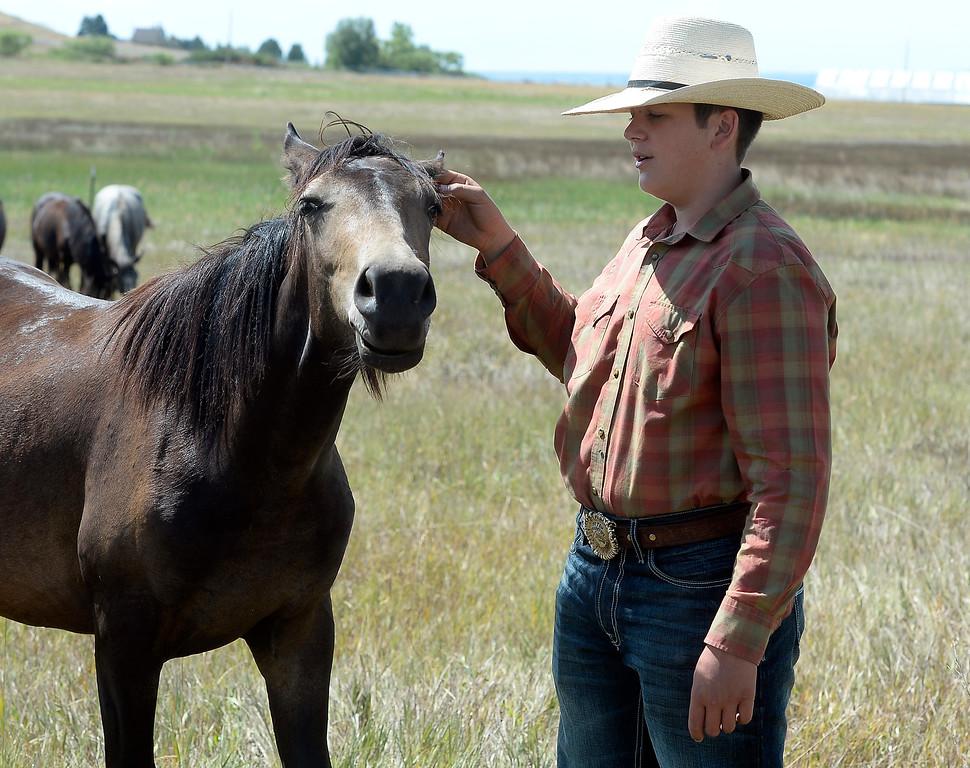 4H Kids Train Wild Mustangs