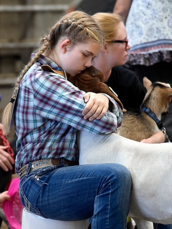 . LONGMONT, CO: August 9: (Photo by Cliff Grassmick/Staff Photographer). Alicia Bohren hugs her goat before competing in the obstacle course during the Boulder County Fair in Longmont on August 9, 2018.