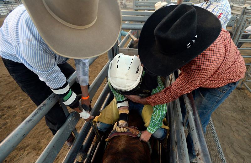 Boulder County Fair Rodeo