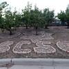 BoCo Jail Garden