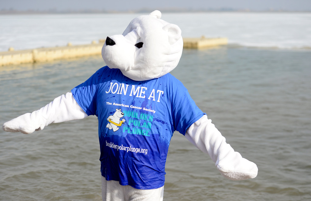 . A participant wearing a polar bear costume emerges from the water during the Boulder Polar Plunge, a benefit for the American Cancer Society, at Boulder Reservoir in Boulder, Colorado on Jan. 1, 2018. (Photo by Matthew Jonas/Times-Call)