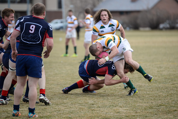 Boulder Rugby Men's A Team vs CSU Rams in Rugby at the CSU Intramural Sports Fields in Fort Collins, Colorado, USA on February 14, 2015.