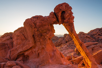 Valley of Fire, Elephant Rock at sunrise. The rock turns red from the morning light.
