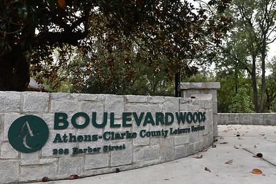 Boulevard Woods Park