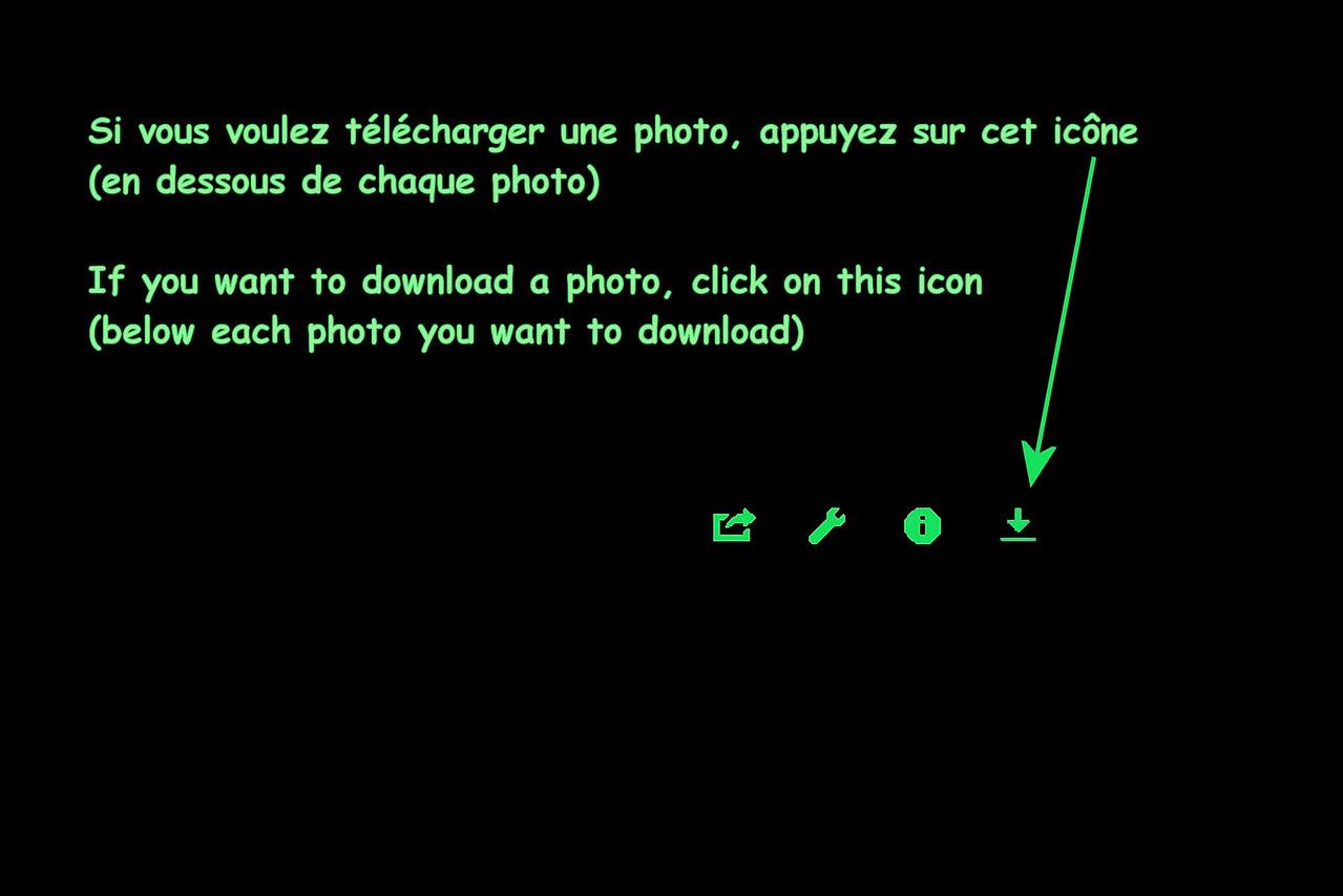 To Download - Green on Black_1800_Q90_ScrStd