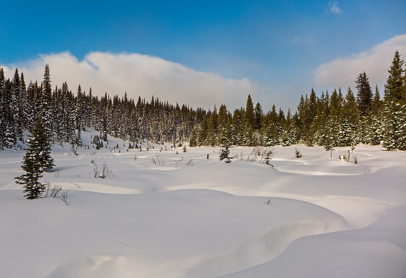Upper Fox Creek Meadows at Blueberry Junction.
