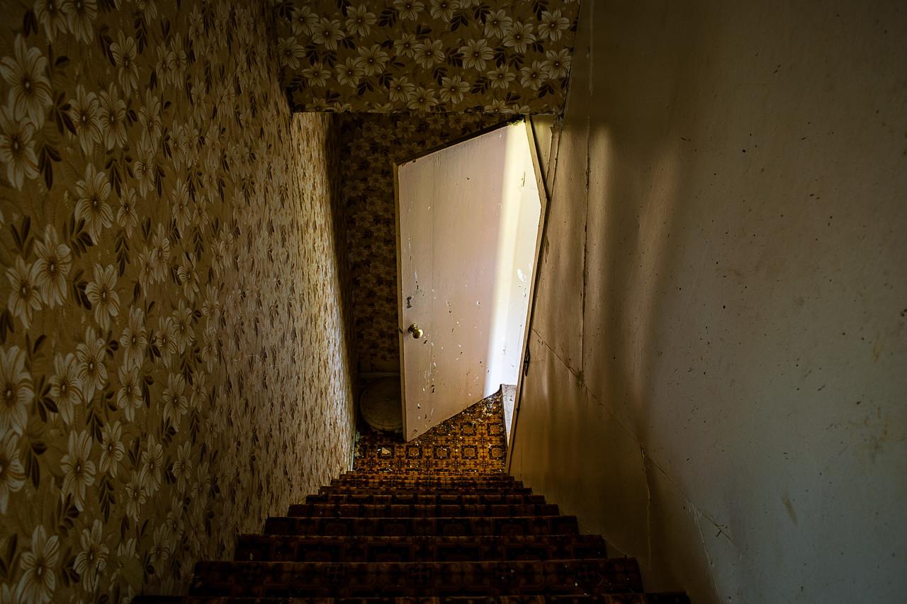 Serenader House