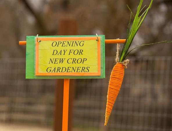 Jan 11 2014 Cool Crop Opening